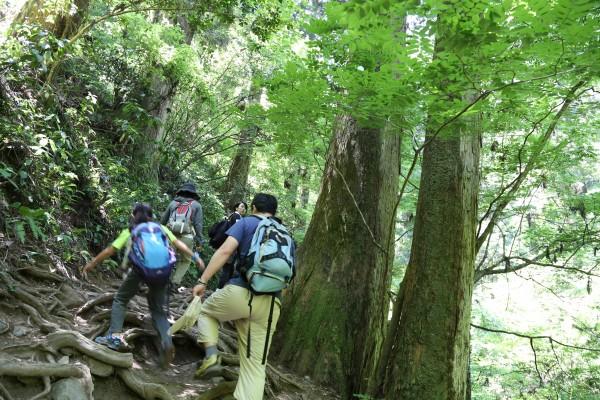 高尾山にみんなで登りました。